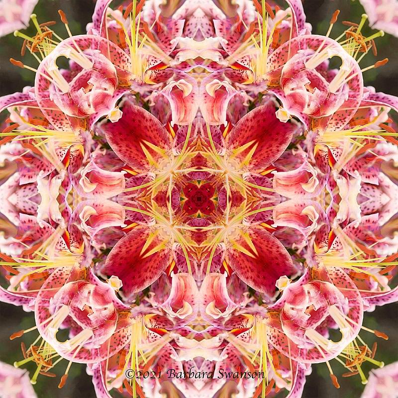 Abstract No. 3, February 24, 2021