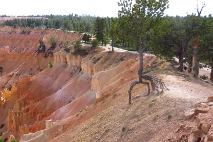 Erosion is the norm in Bryce National Park