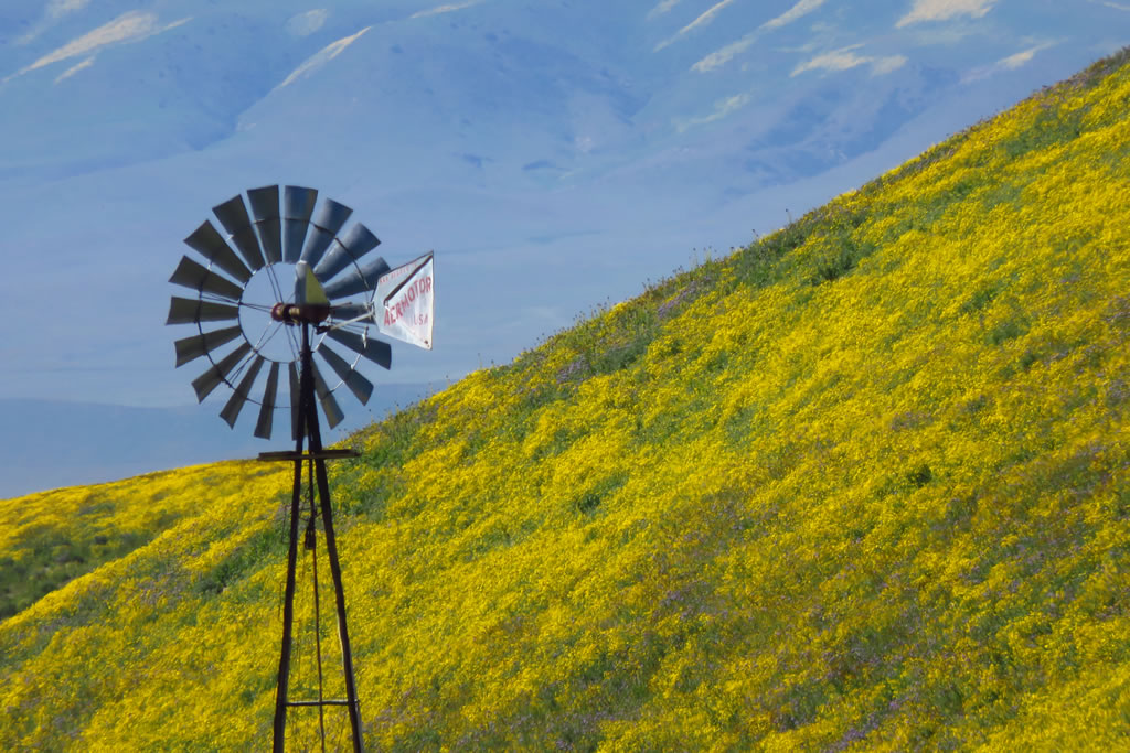 Windmill along Highway 58