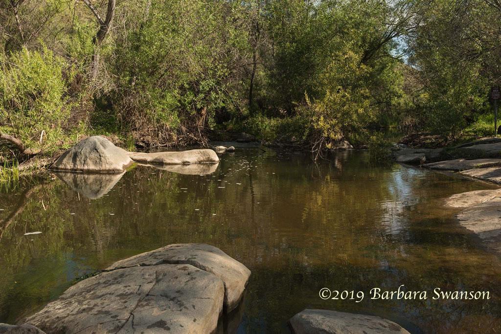 <b>San Diego River riparian zone</b>