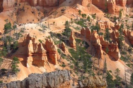 Bryce hiking trail